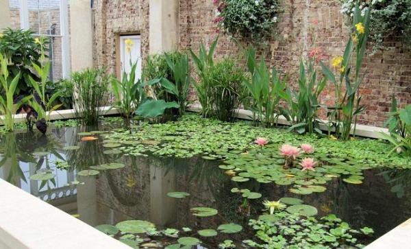 Agua y jard n dise o mantenimiento y obra de jard n for Estanques japoneses jardin
